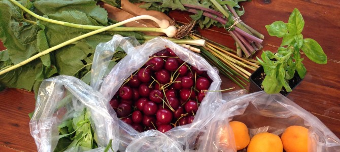 Is Community Supported Agriculture (CSA) for you?